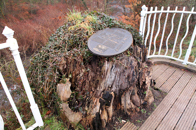 The Tree Stump on Friday 22 February 2019