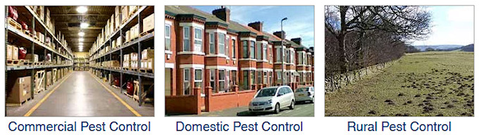 Country Solutions Pest Control and Management