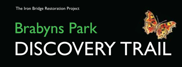 Download the Brabyns Park Discovery Trail